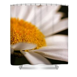 Simply Daisy Shower Curtain
