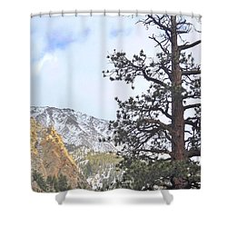 Simply Shower Curtain by Marilyn Diaz