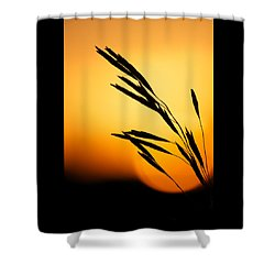 Simply Natural Shower Curtain