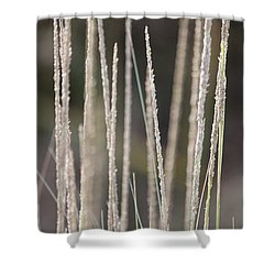 Simply Pure Shower Curtain by Amy Gallagher