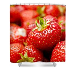 Simply Strawberries Shower Curtain by Anne Gilbert