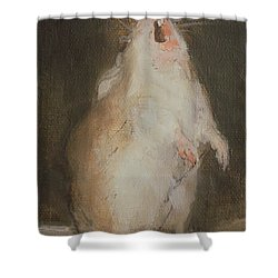 Singing Mouse Shower Curtain by  Ellie O Shea