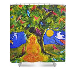 Buddha And The Birds Shower Curtain