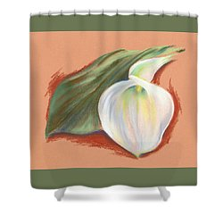 Shower Curtain featuring the pastel Single Calla Lily And Leaf by MM Anderson