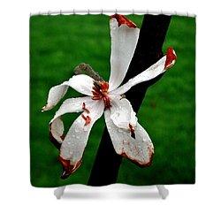 Single Flower Shower Curtain