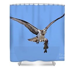 Shower Curtain featuring the photograph Single Handed by Heather King
