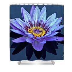 Single Lavender Water Lily Shower Curtain