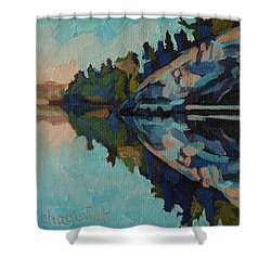 Singleton Cliffs Shower Curtain by Phil Chadwick