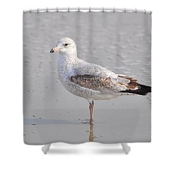 Sinking Sand Shower Curtain by Eric Liller