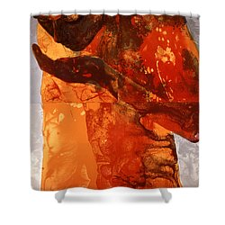 Sip Shower Curtain by Graham Dean