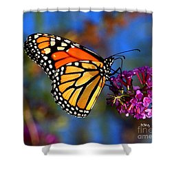 Sipping Monarch Shower Curtain