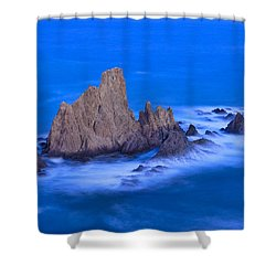 Sirenas Shower Curtain by Guido Montanes Castillo