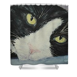 Sissi The Cat 1 Shower Curtain