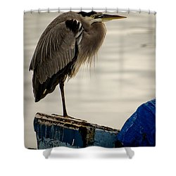 Sittin' On The Dock Of The Bay Shower Curtain