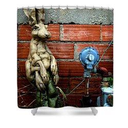 Sittin Pretty Shower Curtain by Newel Hunter