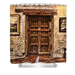 Sitting By The Door By Diana Sainz Shower Curtain