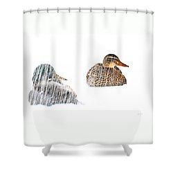 Sitting Ducks In A Blizzard Shower Curtain by Bob Orsillo