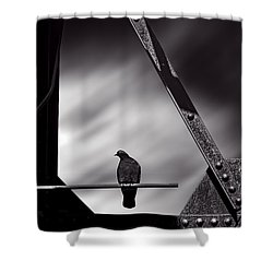 Sitting On A Stick Shower Curtain by Bob Orsillo