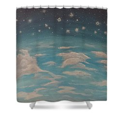 Shower Curtain featuring the painting Sitting On Top Of The World by Thomasina Durkay