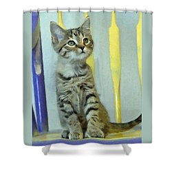 Sitting Pretty Kitty Shower Curtain