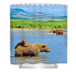 Six-month-old Cub Riding On Mom's Back To Cross Moraine River In Katmai National Preserve-alaska Shower Curtain
