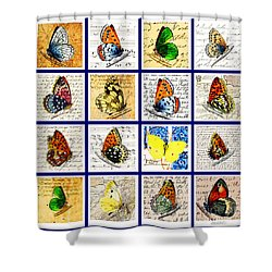 Sixteen Butterflies Shower Curtain