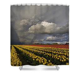 Skagit Valley Storm Shower Curtain by Mike Reid