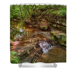 Skillet Creek Shower Curtain