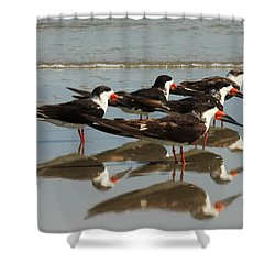 Skimmers With Reflection Shower Curtain