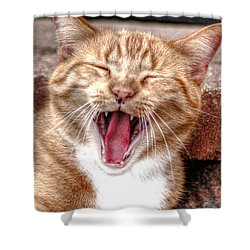 Skippy Laughing Shower Curtain
