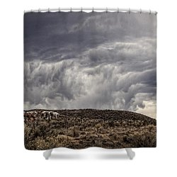Skirting The Storm Shower Curtain