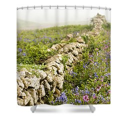 Skomer Wildflowers Shower Curtain by Anne Gilbert