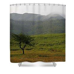 Skc 0053 A Solitary Tree Shower Curtain by Sunil Kapadia