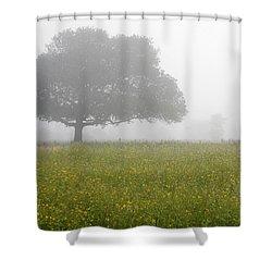 Skc 0056 Tree In Fog Shower Curtain by Sunil Kapadia