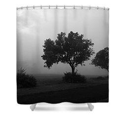 Skc 0074 A Family Of Trees Shower Curtain by Sunil Kapadia