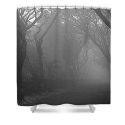 Skc 0077 A Romatic Path Shower Curtain by Sunil Kapadia