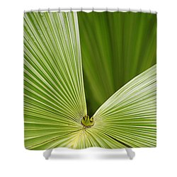 Skc 0691 The Paths Of Palm Meeting At A Point Shower Curtain by Sunil Kapadia