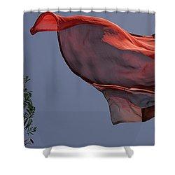 Skc 0958 The Flying Saree Shower Curtain by Sunil Kapadia