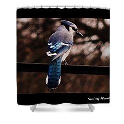 Sky Blue Wings Shower Curtain