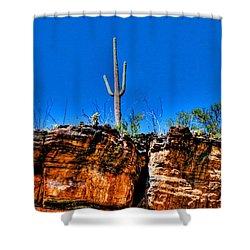Sky Island Shower Curtain