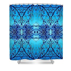 Shower Curtain featuring the photograph Sky Lace Abstract Photo by Marianne Dow