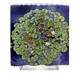 Sky Lilies Shower Curtain