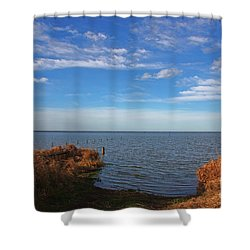 Sky Water And Grasses Shower Curtain