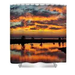 Sky Writing Shower Curtain by Charlotte Schafer