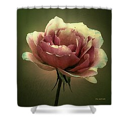 Skyblue Pink Shower Curtain by RC deWinter