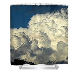 Skyward Sculpture Shower Curtain