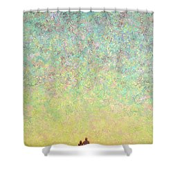 Skywatching In A Painting Shower Curtain by James W Johnson