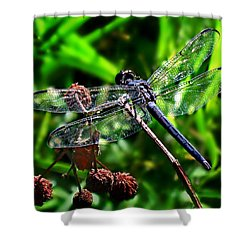 Shower Curtain featuring the photograph Slaty Skimmer Dragonfly by William Tanneberger