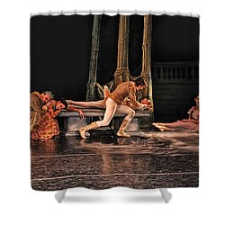 Sleeping Beauty Shower Curtain by Bill Howard