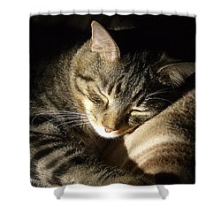 Sleeping Beauty Shower Curtain by Leslie Manley